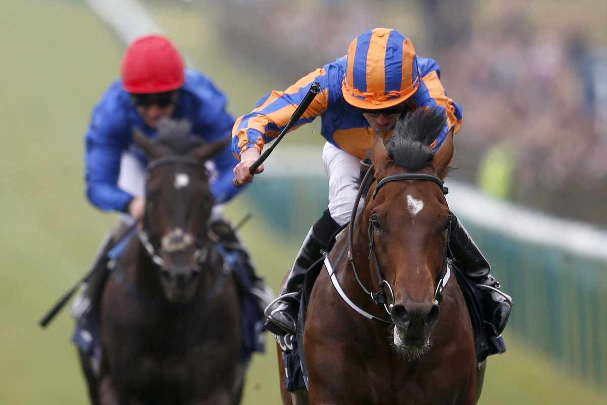 Who Are The Leading Runners In the Derby This Year?, The Non-Modern Man   Unfashionablemale