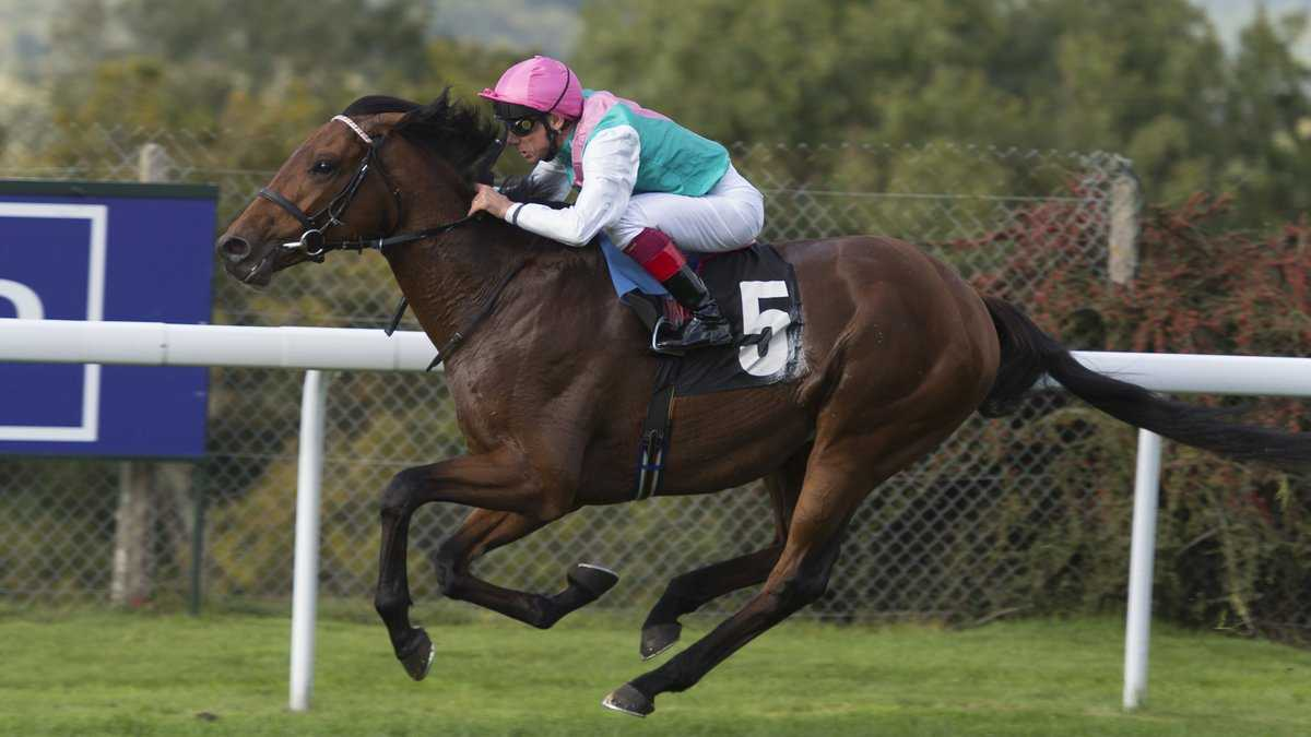 Monarchs Glen out to continue Frankel's legacy, The Non-Modern Man | Unfashionablemale